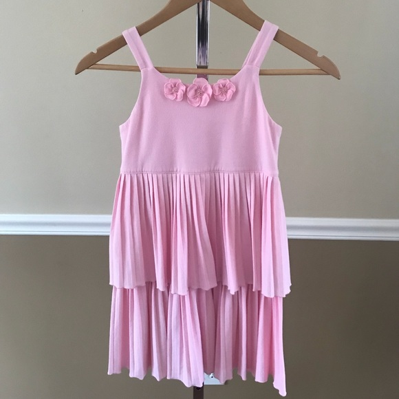Gymboree Other - Gymboree Girls Pink Pleated Easter Fairy Dress